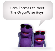 Scroll across to meet The OrganWise Guys